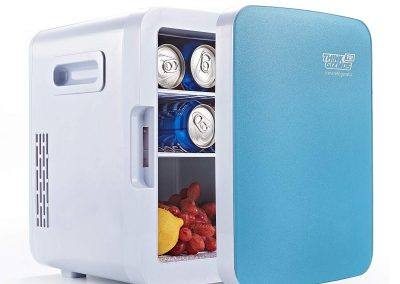 Mini Fridge Electric Cooler and Warmer - AC-DC Portable Thermoelectric System 10L