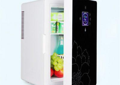 Car Refrigerator, 16L Single Door Dual-Core Refrigeration Portable Handle Picnic Refrigerator Car,Blue
