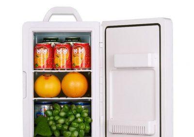 Car Refrigerator, 16L Single Door Dual-Core Refrigeration Portable Handle Picnic Refrigerator Car,Blue_2