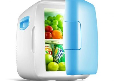 Janedream 4L Mini Car Fridge Freezer Cooler Warm Portable Icebox Travel Refrigerator