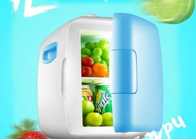 Janedream 4L Mini Car Fridge Freezer Cooler Warm Portable Icebox Travel Refrigerator_2